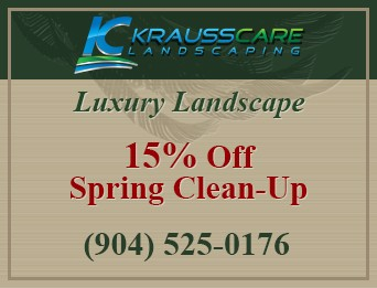 15% Off Spring Clean-Up